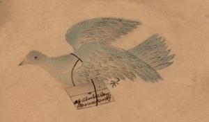 birddrawingcharlottehaysmall