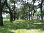 Oak Avenue by Slave Cabins