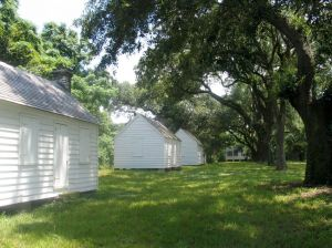 Friends of McLeod Plantation preserves these