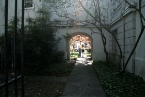Path from the Gibbes Garden to the library