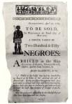 Slave Auction Charleston