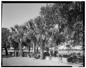 Tabby Ruins, Sunnyside Plantation, Edisto Island, SC
