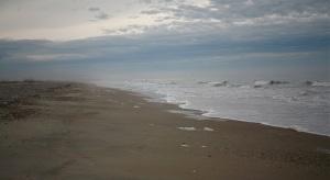 Edingsville Beach © '10 C.HutsonWrenn