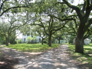 McLeod Plantation, Charleston, SC